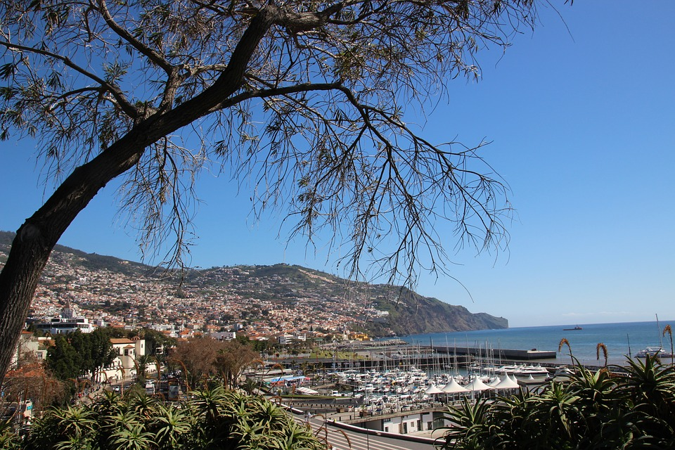 madeira, funchal, portugal