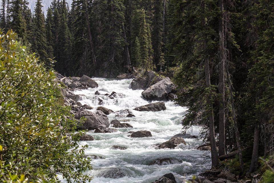 maligne river, jasper, alberta