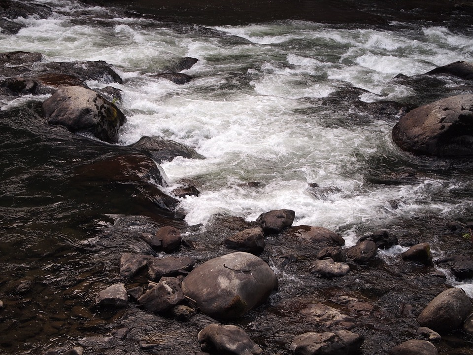river, stream, water