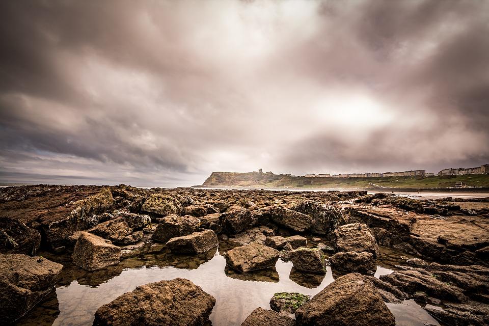 seaside, coast, tide
