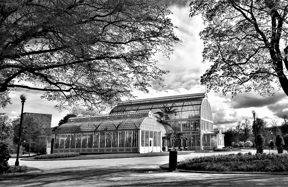 gothenburg, the palm house, the garden society of gothenburg