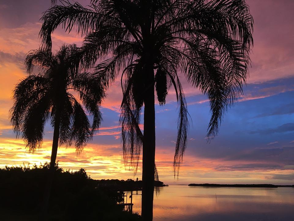 florida, vacation, sunset