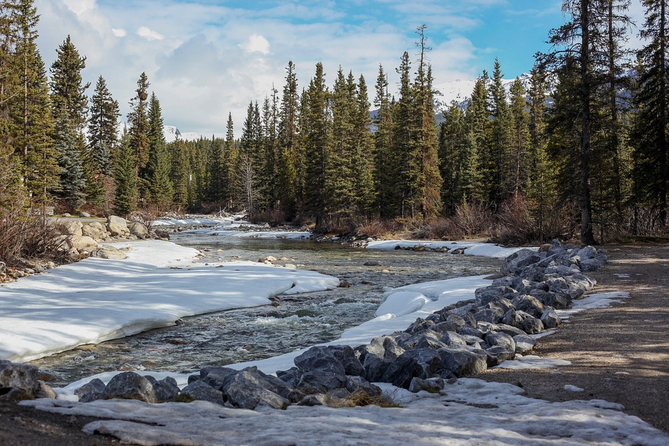 lake louise, bow trail, canada