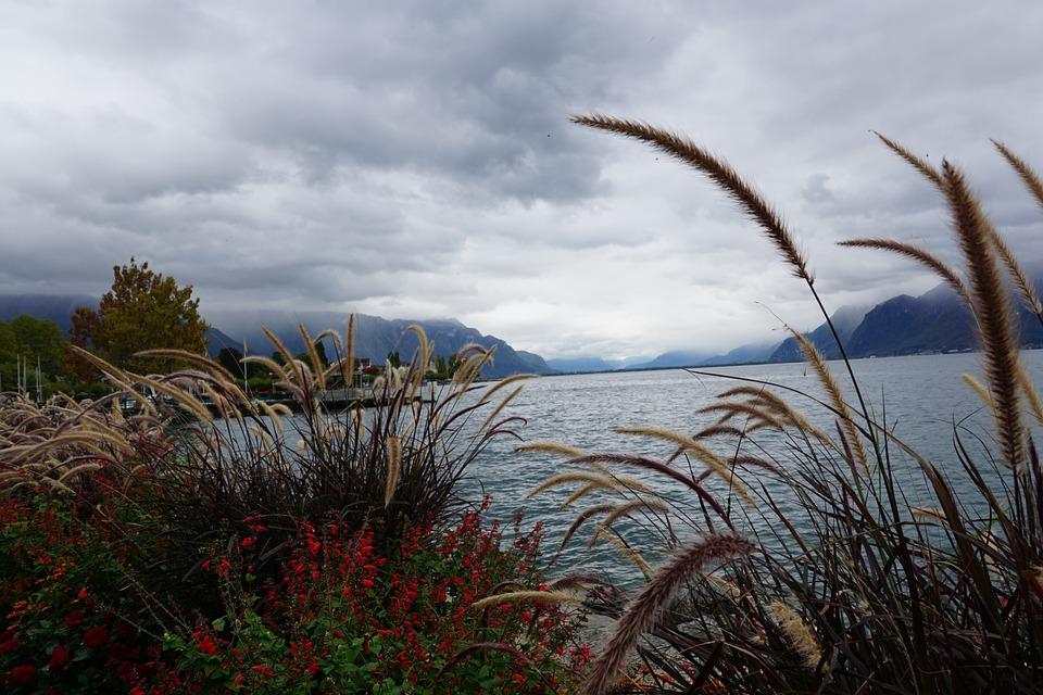 lake, nature, switzerland